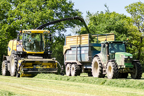 New holland forage harvester picking up grass silage fitted with a selmech additive applicator